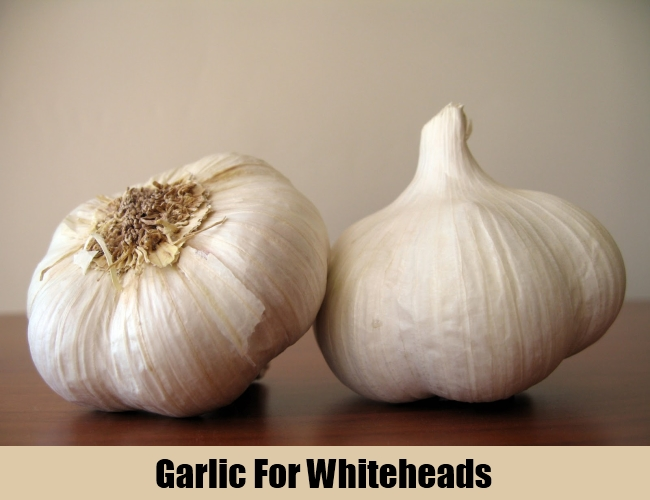 Garlic For Whiteheads