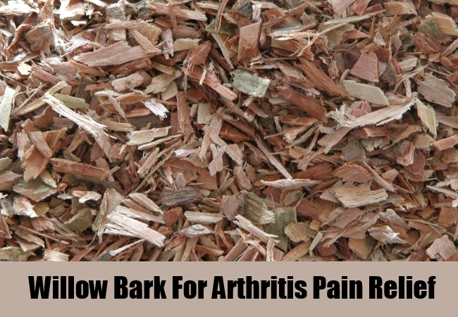 Willow Bark For Arthritis Pain Relief