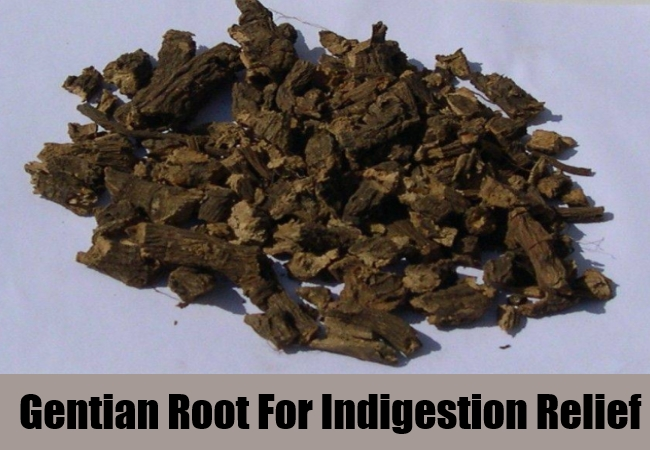 Gentian Root For Indigestion Relief