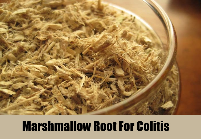 Marshmallow Root For Colitis