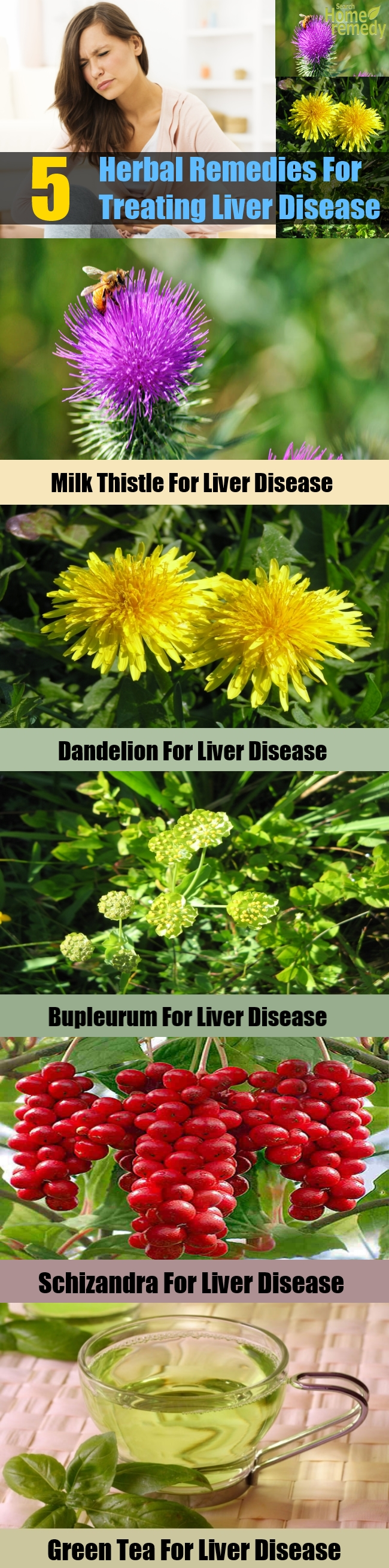 5 Effective Herbal Remedies For Treating Liver Disease
