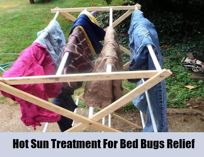 Hot Sun Treatment For Bed Bugs Relief