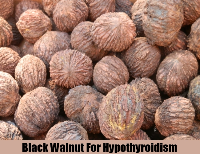 Black Walnut For Hypothyroidism