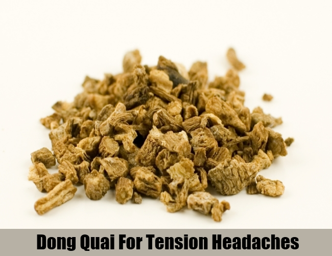 Dong Quai For Tension Headaches