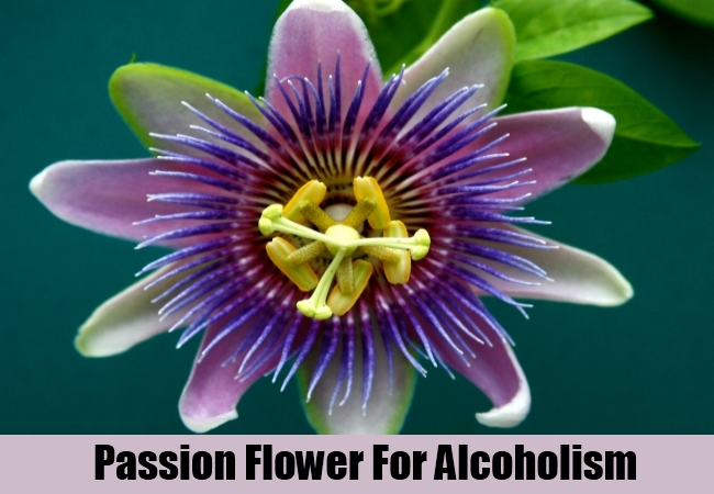Passion Flower For Alcoholism