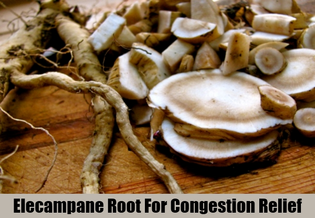 Elecampane Root For Congestion Relief