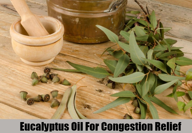 Eucalyptus Oil For Congestion Relief