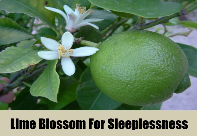 Lime Blossom For Sleeplessness