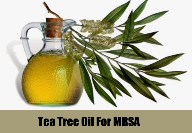 Tea Tree Oil For MRSA