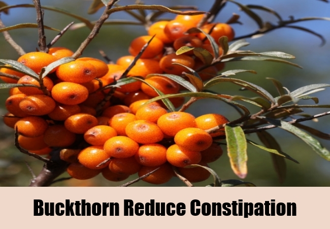 Buckthorn Reduce Constipation