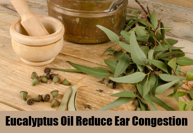 Eucalyptus Oil Reduce Ear Congestion