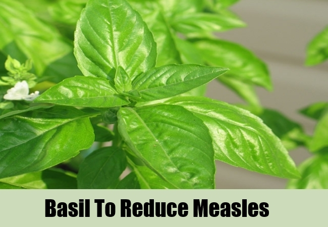 Basil To Reduce Measles