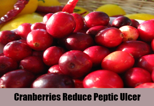 Cranberries Reduce Peptic Ulcer
