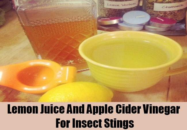 Lemon Juice And Apple Cider Vinegar For Insect Stings