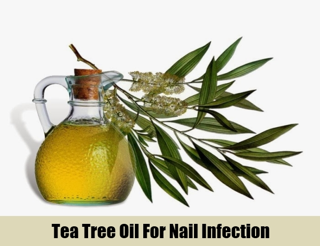 Tea Tree Oil For Nail Infection