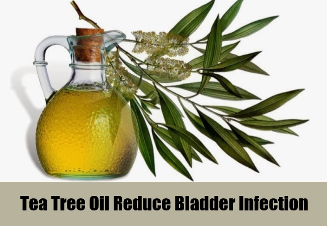 Tea Tree Oil Reduce Bladder Infection