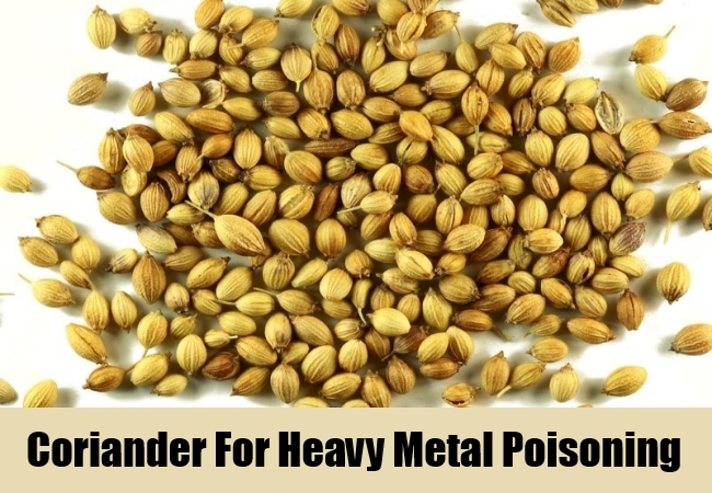 Coriander For Heavy Metal Poisoning