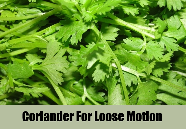 Coriander For Loose Motion