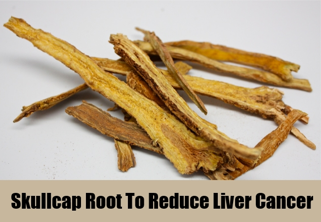 Skullcap Root To Reduce Liver Cancer