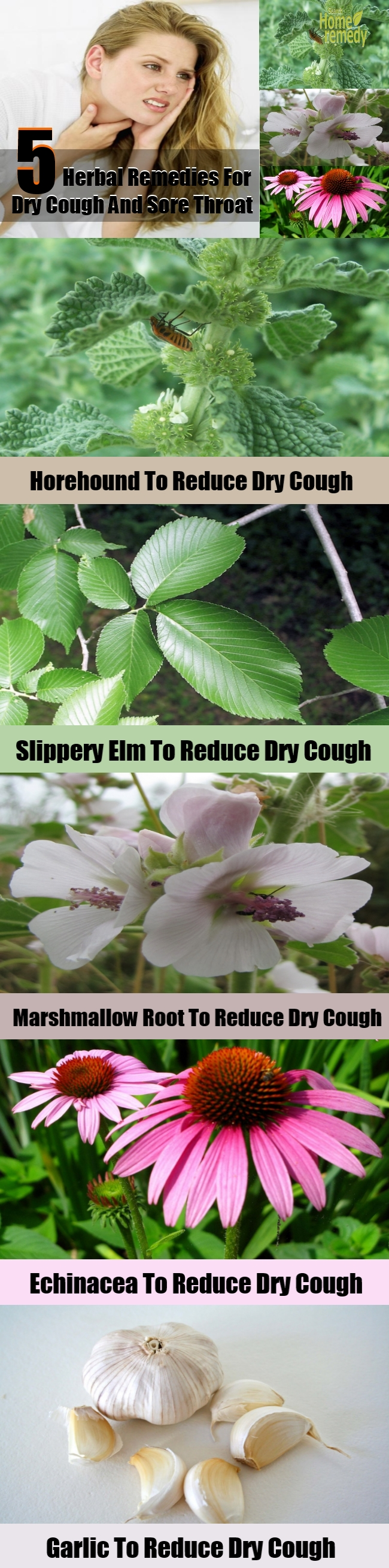 Top 5 Herbal Remedies For Dry Cough And Sore Throat