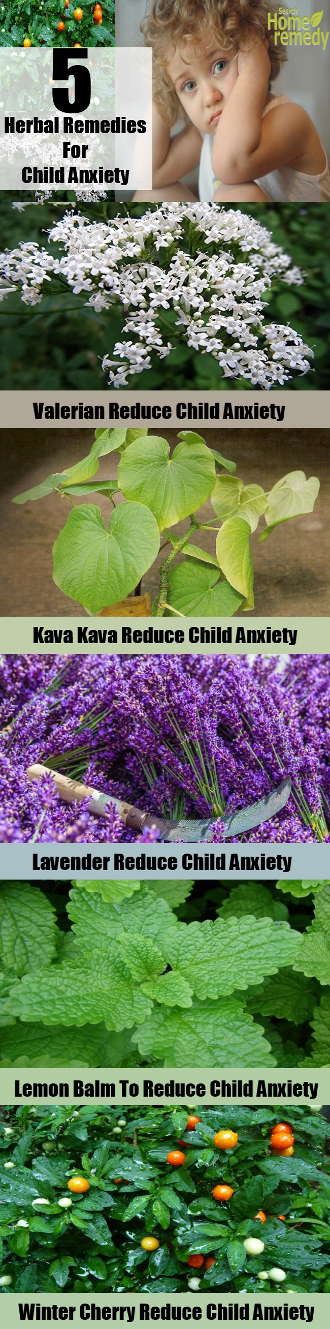 5 Best Herbal Remedies For Child Anxiety