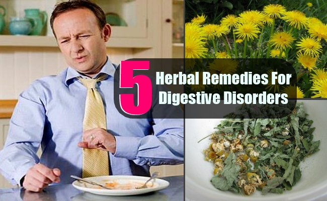5 Top Herbal Remedies For Common Digestive Disorders