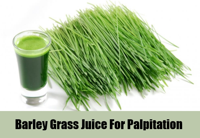Barley Grass Juice For Palpitation