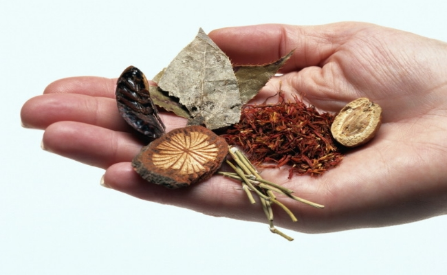 Herb Treatment For ENT Remedies