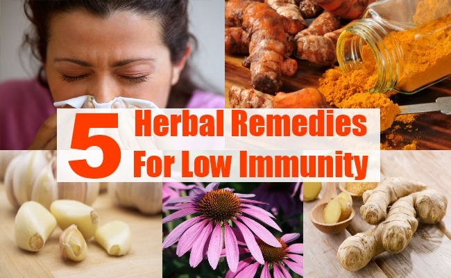 Remedies For Low Immunity