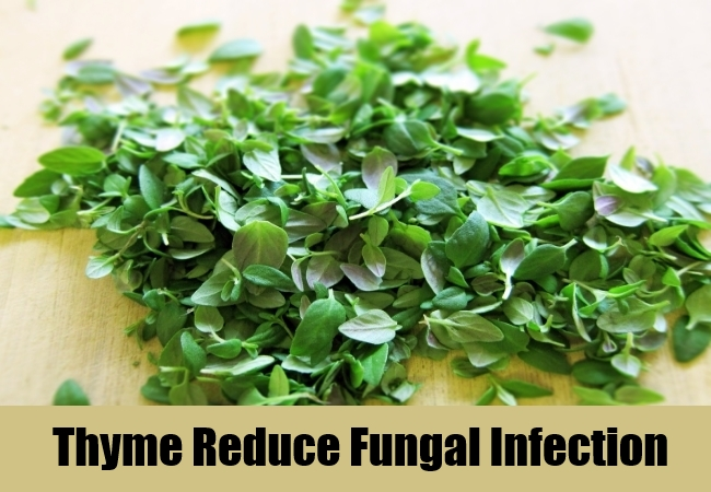 Thyme Reduce Fungal Infection