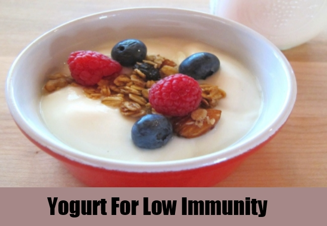 Yogurt For Low Immunity