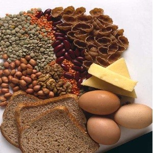 Source of Protein Intake