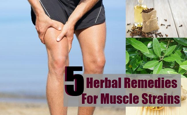 Herbal Remedies For Muscle Strains