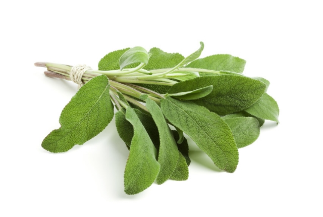 Go Herbal And Use Sage