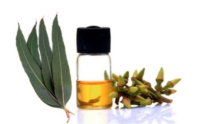 Inhale Steam Of Eucalyptus Oil