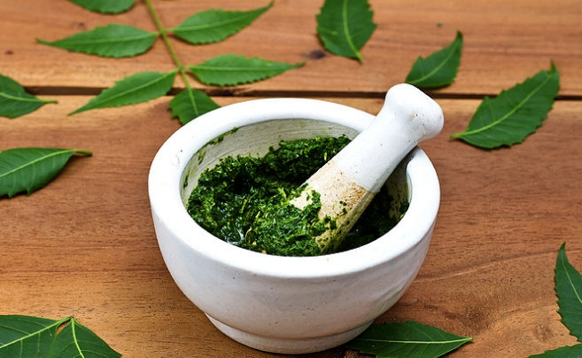 Neem Oil And Paste