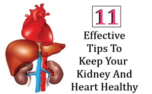 11 Effective Tips To Keep Your Kidney And Heart Healthy