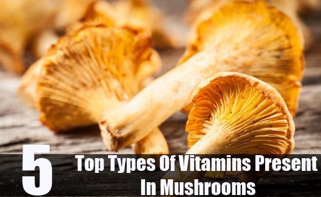 5 Top Types Of Vitamins Present In Mushrooms