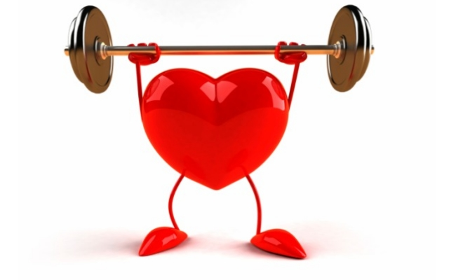 Healthy Heart Function