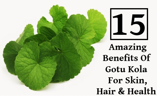 Amazing Benefits Of Gotu Kola