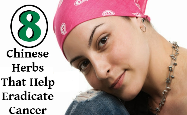 Chinese Herbs That Help Eradicate Cancer