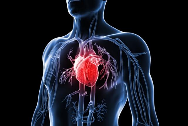 Controls Many Heart Diseases