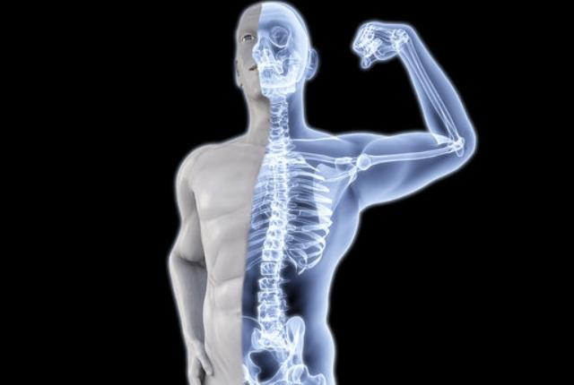 Strengthens Bone And Teeth