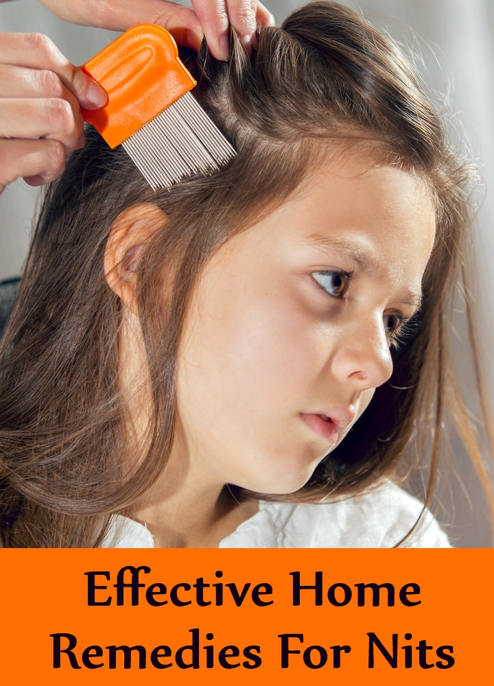 Effective Home Remedies For Nits