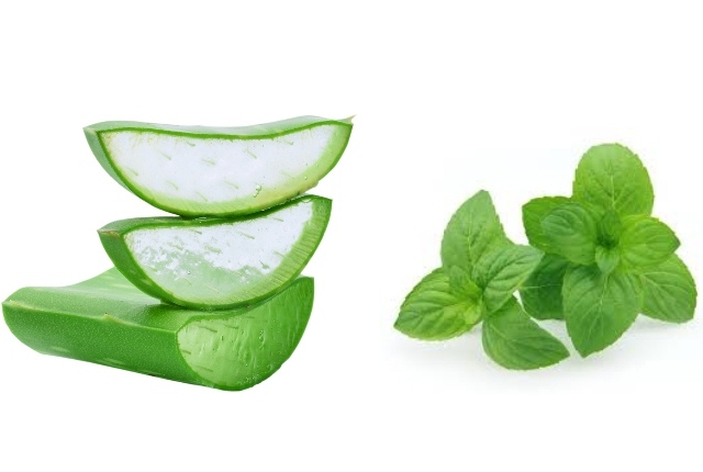 Basil And Aloe Vera Cleanser