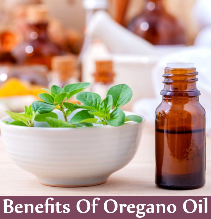 5 Amazing Benefits Of Oregano Oil