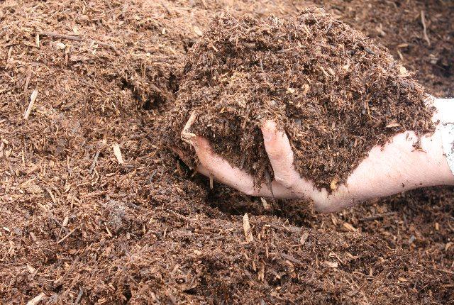 compost and fertilizer