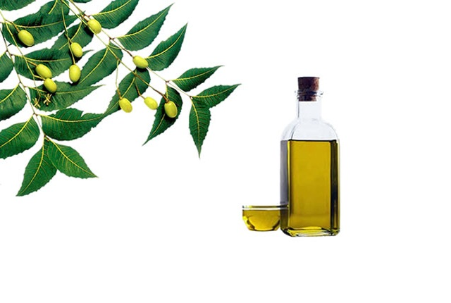 Using Neem Based Products