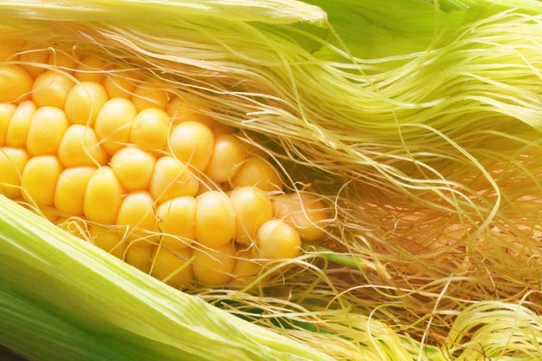 9 Amazing Benefits Of Corn Silk