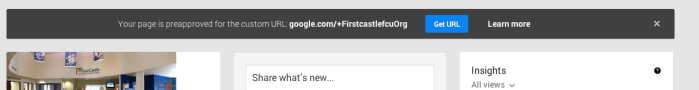 """Google+ vanity URL is provided with """"org"""" - for non profit?"""